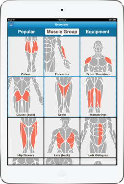 skimble-workout-trainer-exercises-by-muscles