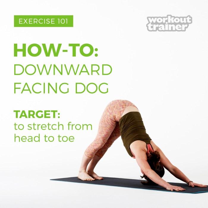 Exercise-101-Downward-Facing-Dog-4