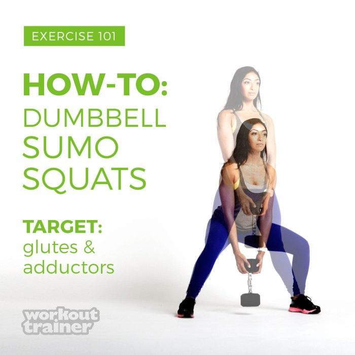 Skimble-Workout-Trainer-Exercise 101-How-To-Dumbbell-Sumo-Squats