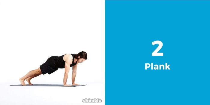 skimble-workout-trainer-top-6-6-pack-abs-plank