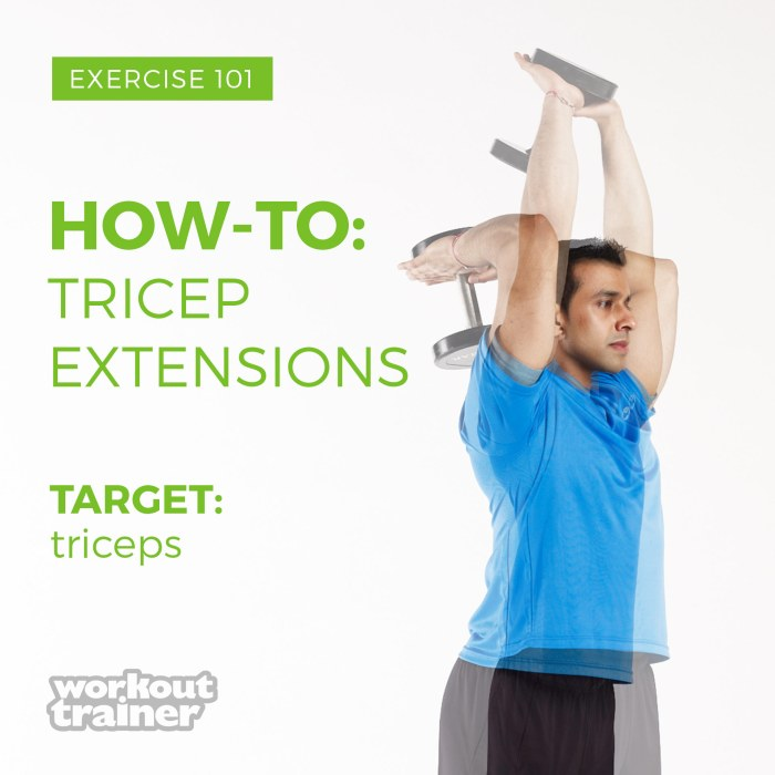 1118_Ex101_How-To-Tricep-Extensions