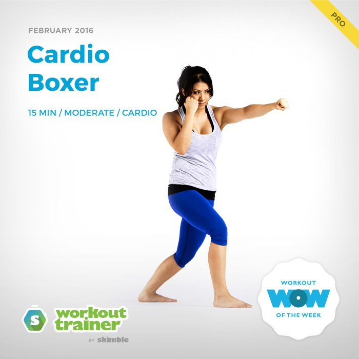 skimble-workout-trainer-cardio-boxer-cardio