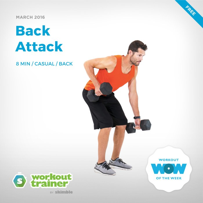 Skimble's Workout of the Week: Back Attack