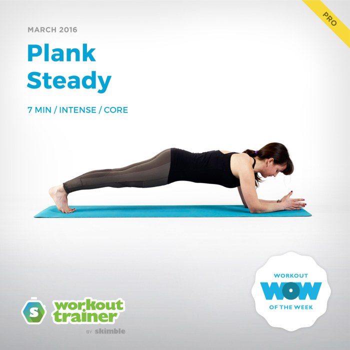 Skimble's Pro Workout of the Week: Plank Steady