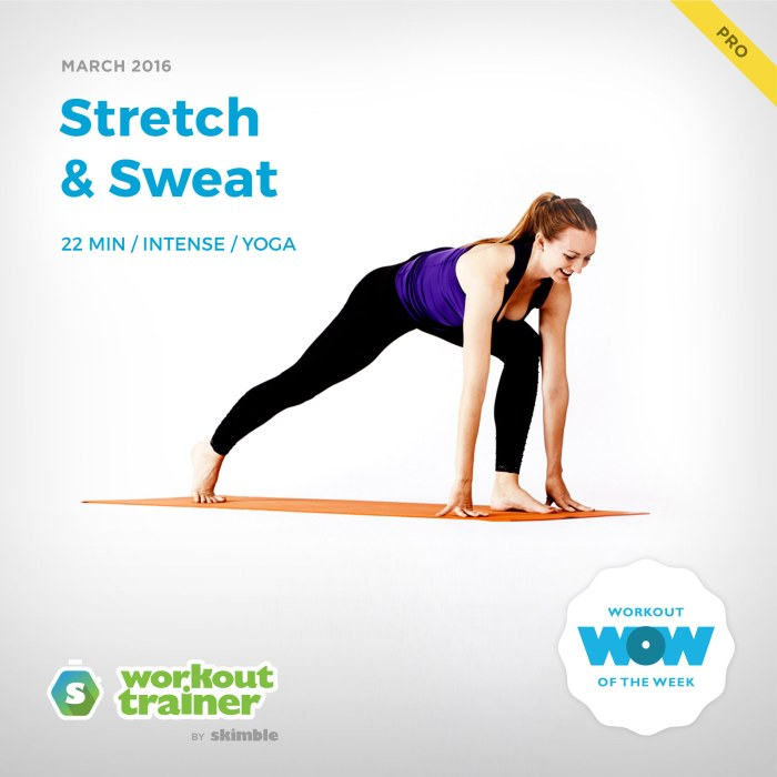 Skimble's Workout Trainer Pro WOW: Stretch & Sweat