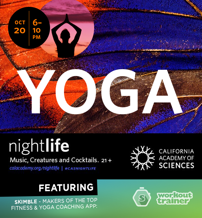 Workout Trainer by Skimble: CAS Yoga NightLife