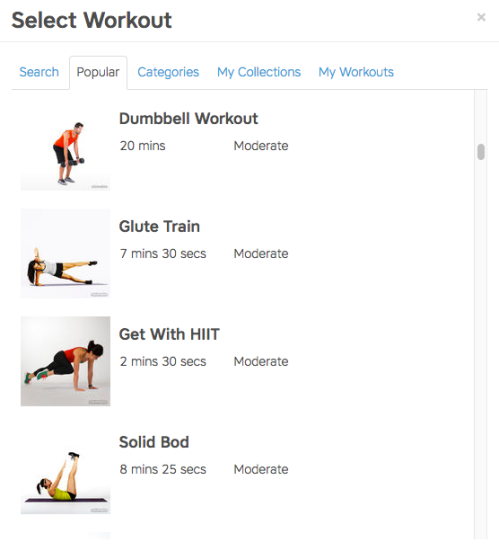 Workout Trainer: How to Create Programs on the Web
