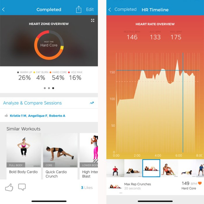 Workout Trainer by Skimble: Heart Rate Data Overview