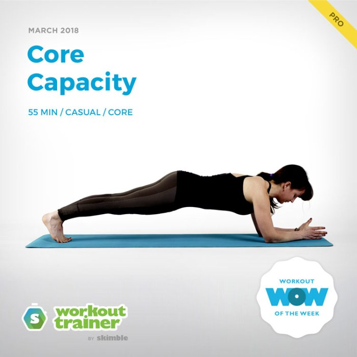 Workout Trainer by Skimble: Pro Workout of the Week: Core Capacity