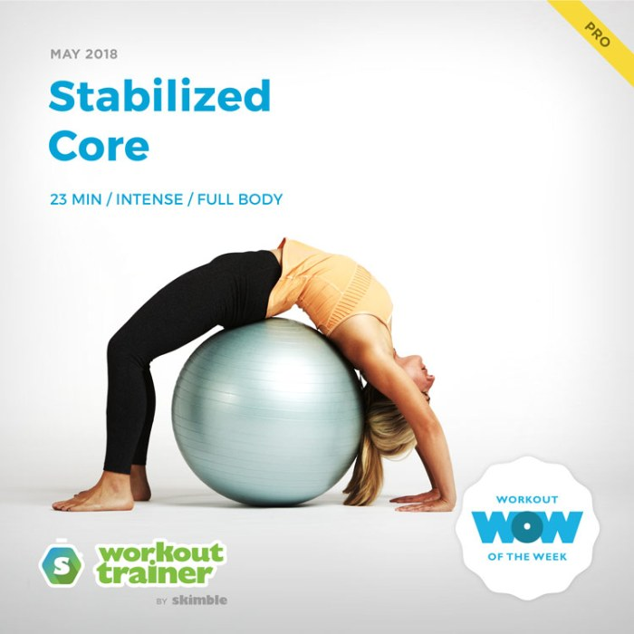 Workout Trainer by Skimble: Pro Workout of the Week: Stabilized Core