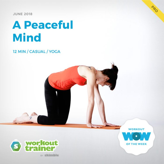 Workout Trainer by Skimble: Pro Workout of the Week: A Peaceful Mind
