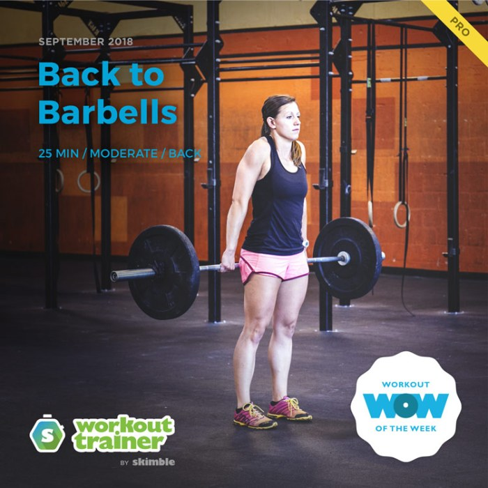 Workout Trainer by Skimble: Pro Workout of the Week: Back to Barbells