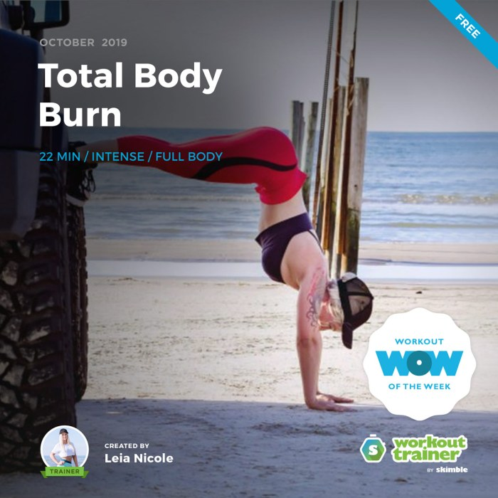 Workout Trainer by Skimble: Free Workout of the Week: Total Body Burn by Leia Nicole