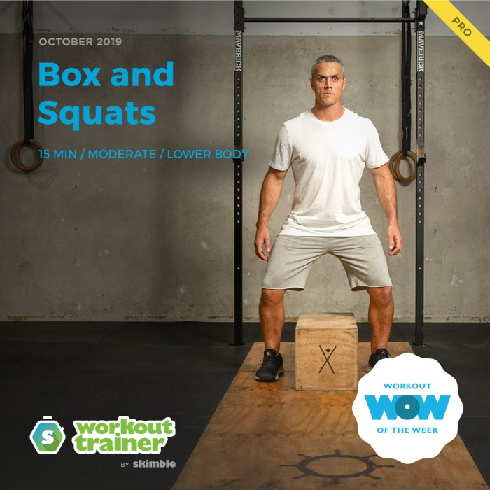 Workout Trainer by Skimble: Pro Workout of the Week: Box and Squats