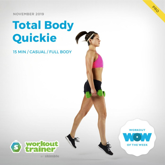 Workout Trainer by Skimble: Pro Workout of the Week: Total Body Quickie