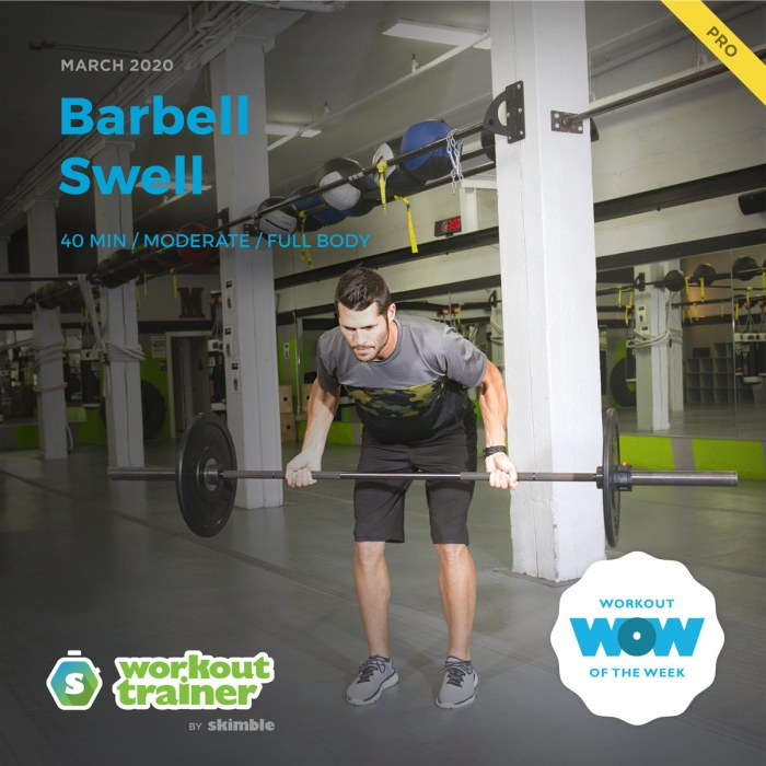 Workout Trainer by Skimble: Pro Workout of the Week: Barbell Swell