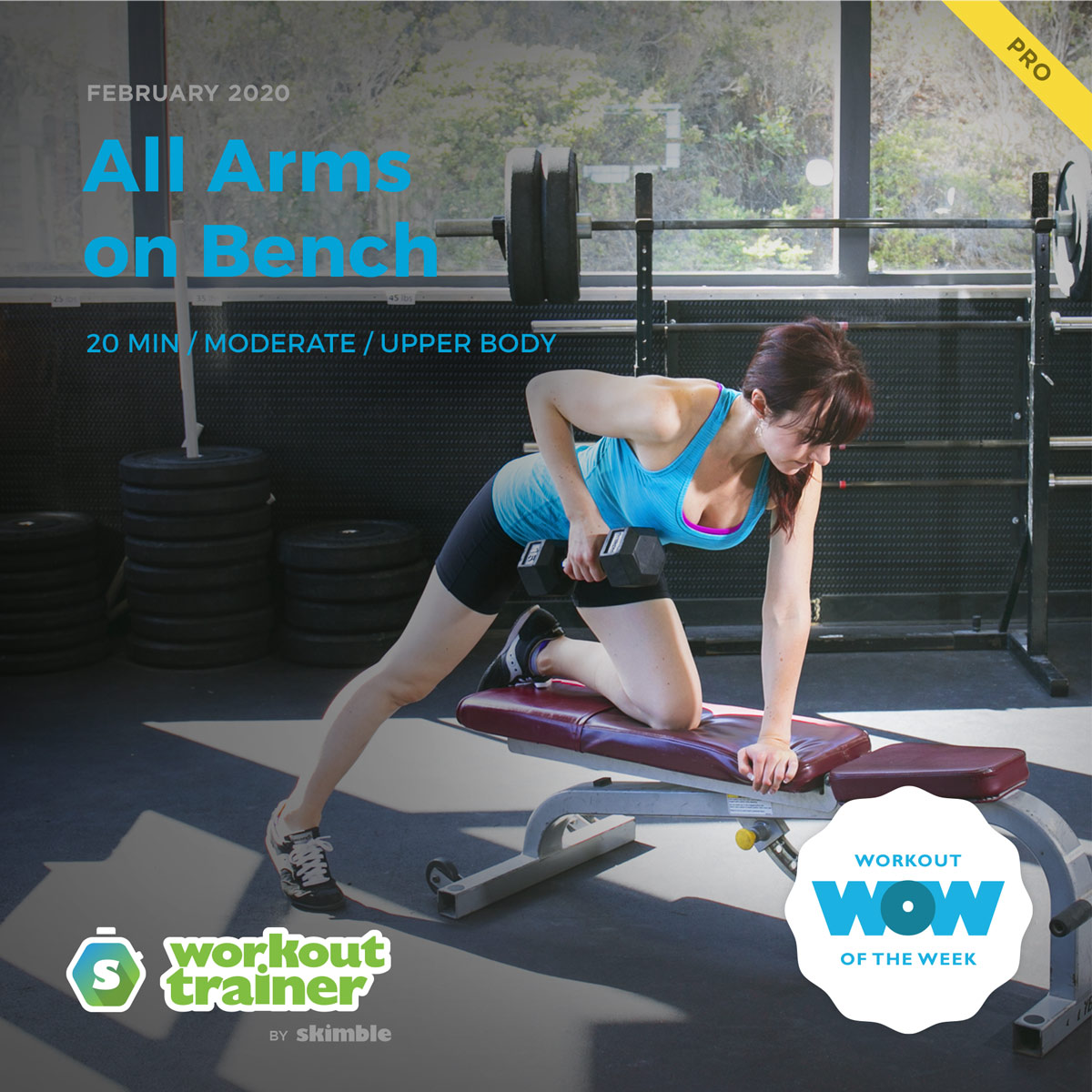 Workout Trainer by Skimble: Pro Workout of the Week: All Arms on Bench