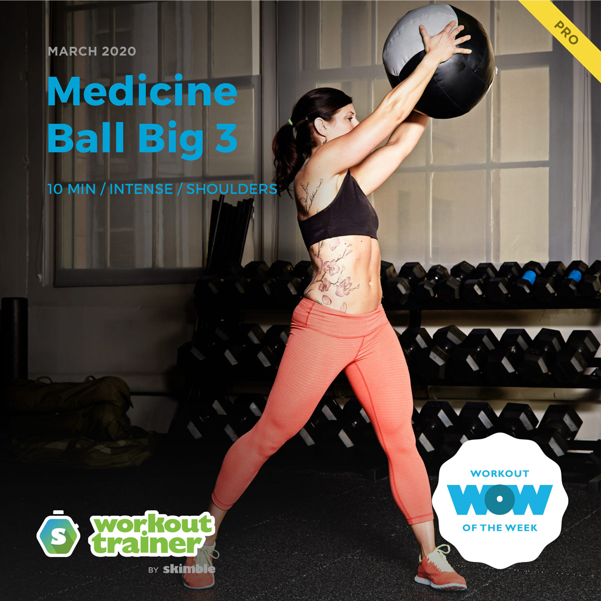 Workout Trainer by Skimble: Pro Workout of the Week: Medicine Ball Big 3