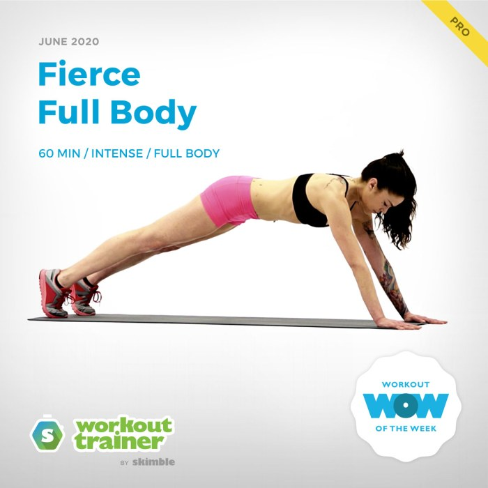 Workout Trainer by Skimble: Pro Workout of the Week: Fierce Full Body