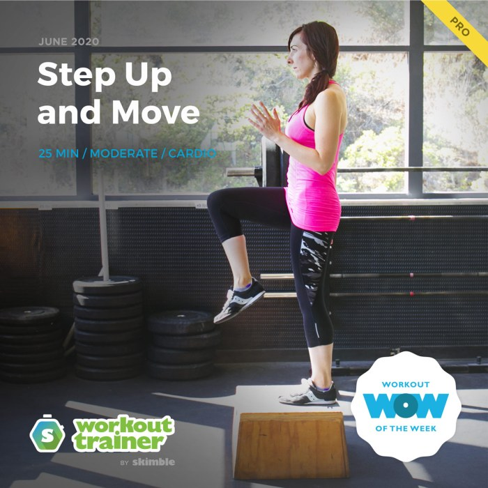 Workout Trainer by Skimble: Pro Workout of the Week: Step Up and Move