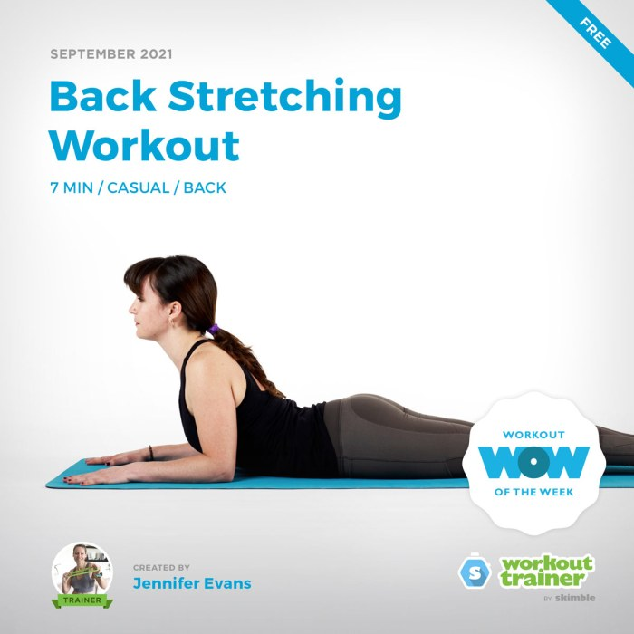 Female Yoga Instructor doing Sphinx Pose in this Back Stretching Workout