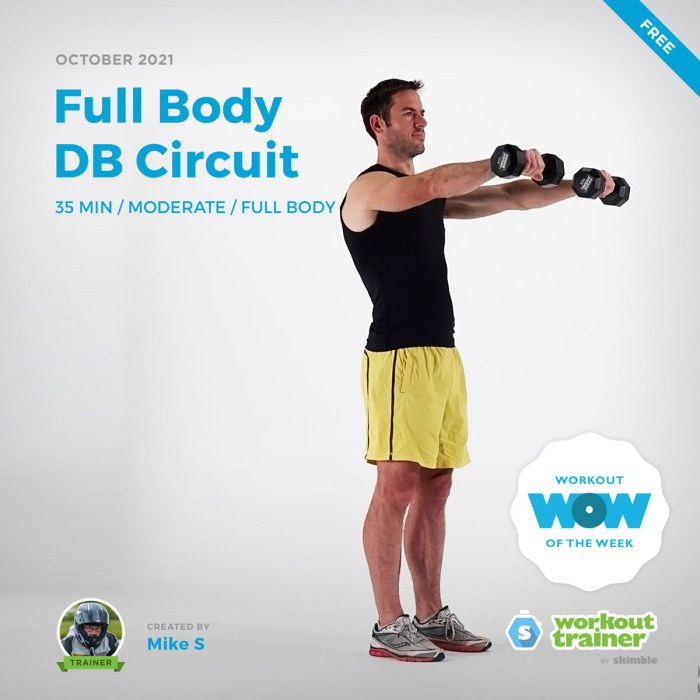 Male Personal Trainer doing Dumbbell Front Raises with medium dumbbells